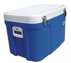 44L Vaccine carrier, plastic cooler box