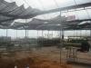 Delong Farm Plant