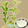 Stevia Extract, Ginseng Extract / Ginsenoside,Stevioside