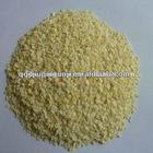 JQ china Bulk dried garlic Granules