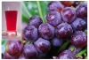 Pigment for food and beverage Grape Skin Extract Anthocyanin Natural Food Color Organic