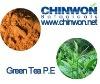 Green Tea Extract EGCG 80% anti-aging