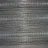 welded wire mesh roll /fencing net (anping factory)