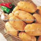 China new crop russet potatoes price