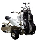 Three-wheel Folding Powered Golf Trike Cheap Golf Buggy For Sale SX-E0906