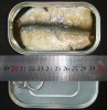 canned pilchards fish