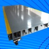 100 Tons Electronic Chinese Weighing Scale with Ramps