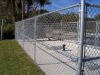 Chainwire fence