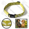 "Eco-friendly dog collar 3/4""*14-20"""