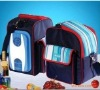 16L mini portable bag Car food warmer&cooler
