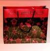 2012 New Design Paper Bag