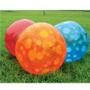 PVC Inflatable Spots Beach Ball