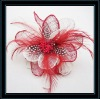 2012 New Arrival amphibious feather corsage/hair clip