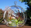 clear glass christmas ornament ball MH-12356