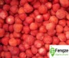 new frozen Honey strawberry good quality and competitive price