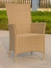 Garden PE Rattan Chair Outdoot Furniture GR9180