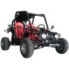 260CC Go Kart with EEC