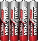 LR03 AM-4 AAA size Alkaline Battery