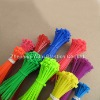Nylon Cable Tie [CE,RoHS,PAHS,REACH,SGS, ISO9001]