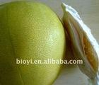 Honey honey pomelo - citrus fruit