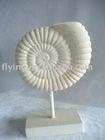 Poly resin seashell stand, trumpet shell decoration, HF-06021