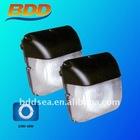 lvd ceiling induction lamp (CE/FCC/RoHs/CCC)