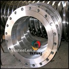 No Fumigate Stainless Steel Flange