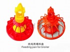auto poultry feeder
