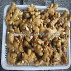 30lbs pvc box fresh ginger