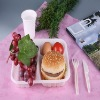 biodegradable eco friendly food packaging box