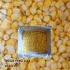IQFsweet corn