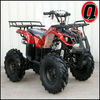 125cc ATV Automatic ATV-3125X-8