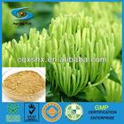 Pharmaceutical Grade Chlorogenic Acid