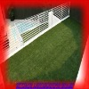 Best balcony grass