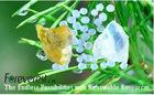 Phenol Modified Terpene Resin