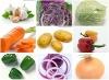 2012 seasonable fresh vegetables in different pack
