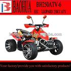 eec 250cc atv BH250ATV-6