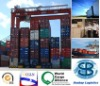from China to djibouti Sea Freight/sea shipping service/forwarder agent