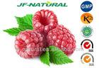 Raspberry Puree Powder