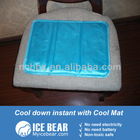 summer cool cushion