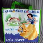 Eco laminated non woven shopping bag 0010