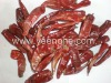 Dry Small Caotian Pepper