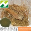 Gentiana triflora Extract