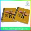 Yellow Cartoon Spiral Notebook
