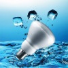 R80 Energy Saving Light Bulb