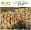 Chinese fresh potato with competitive price