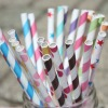 Vintage Inspired Paper drinking Straws- stripe and polka dots