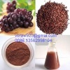Natural grape seed extract,