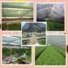 HDPE Sunshade net (best manufacture)