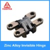 Zinc alloy Concealed Hinge